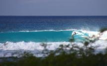 Allamanda Surf Camp, premier surf camp de Guadeloupe, idéal pour les trip surf.
