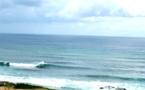 Tarifs formule surf guadeloupe allamanda surf camp